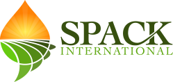 Spack International Logo