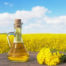 Spack International - Organic Canola Oil