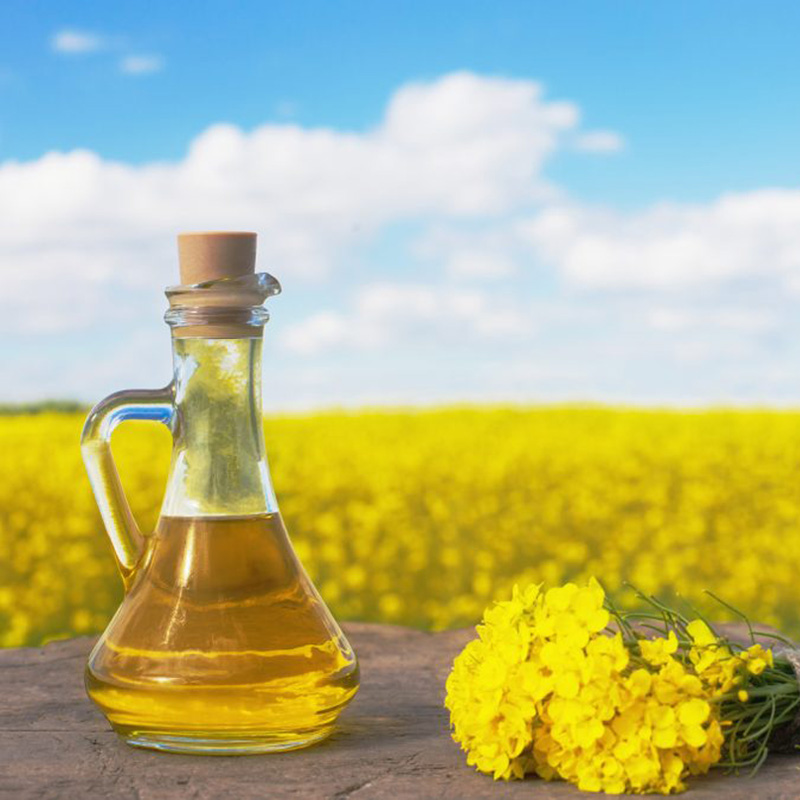 Spack International - Organic Canola Oil