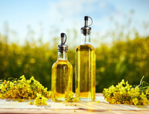 Fascinating Facts About Canola Oil